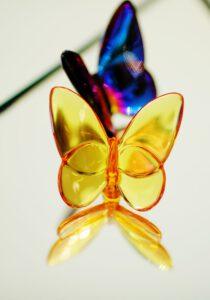 اکسسوری پروانه شیشهای
